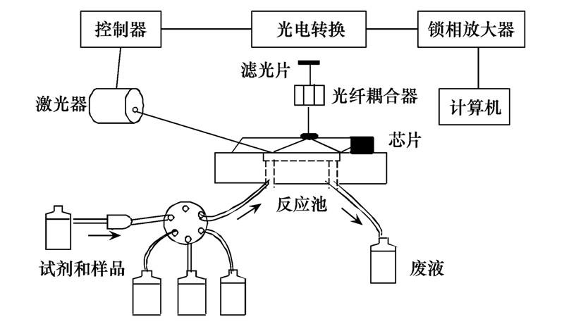 本传感器的硬件结构主要包括3部分: 光学元件, 流动进样系统, 控